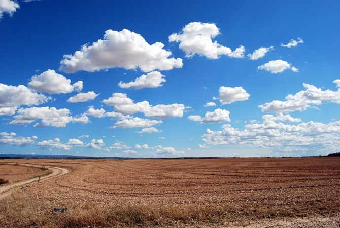 a huge, mown field and blue sky: horizon showing