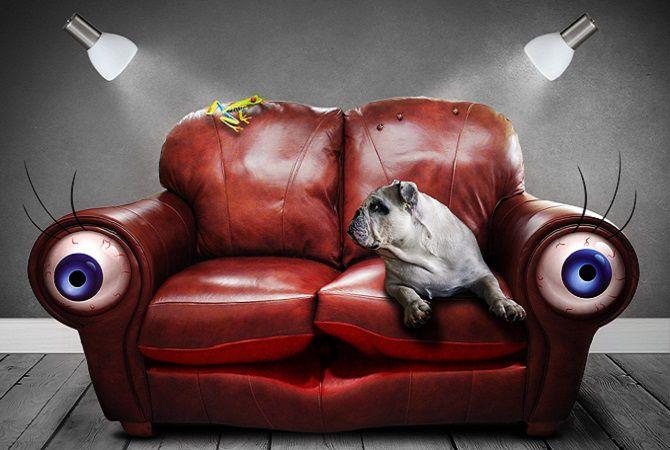 Surreal sofa wordpress 670x450